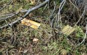 Tuchola tonie w śmieciach – kolejne obrazki