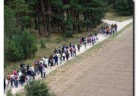 """""""VIII Marsz Szlakiem Żołnierzy Września 1939"""" połączony ze spacerem nordic walking"""