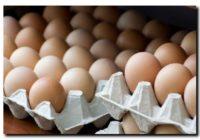 Salmonella w jajach z sieci Dino?