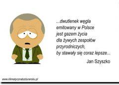 Minister Szyszko nie lubi szyszek, więc dlatego trwa masowe wycinanie drzew?