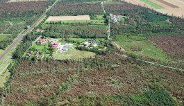 Lasy Państwowe informują…
