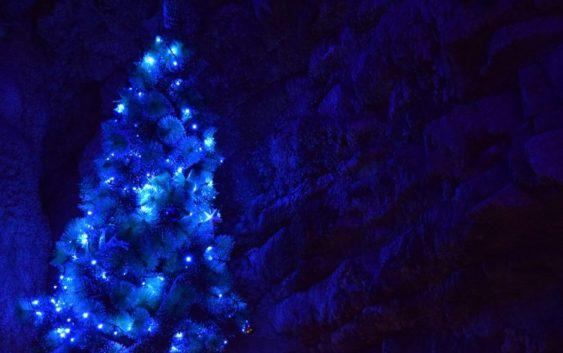 Tuchola zakłada świąteczne wdzianko