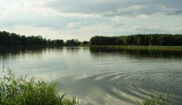 Starostwo Powiatowe w Tucholi publikuje wykaz nieruchomości do oddania w dzierżawę