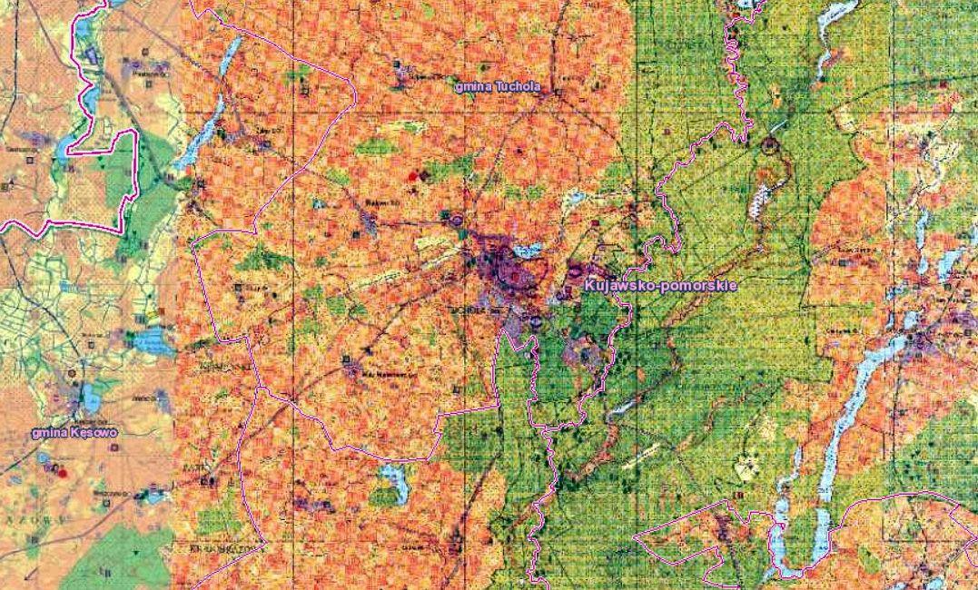 Zdjęcia z powietrza ujawniły, że na terenie naszych Borów znajduje się obiekt porównywalny z osadą biskupińską!